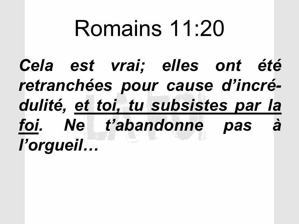 Romains 11:20 Cela est vrai; elles ont été retranchées pour cause d'incré-dulité, et toi, tu subsistes par la foi.
