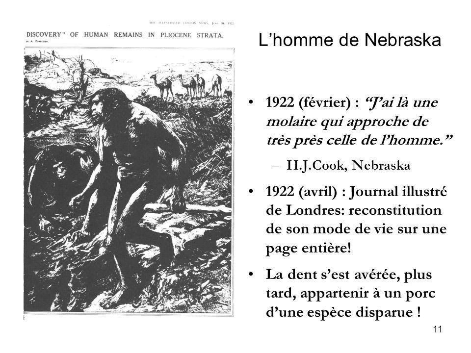 L'homme de Nebraska 1922 (février) : J'ai là une molaire qui approche de très près celle de l'homme.
