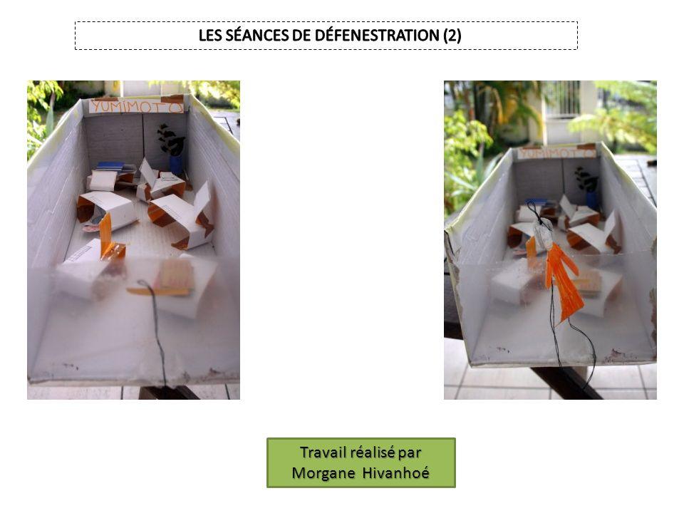 LES SÉANCES DE DÉFENESTRATION (2)