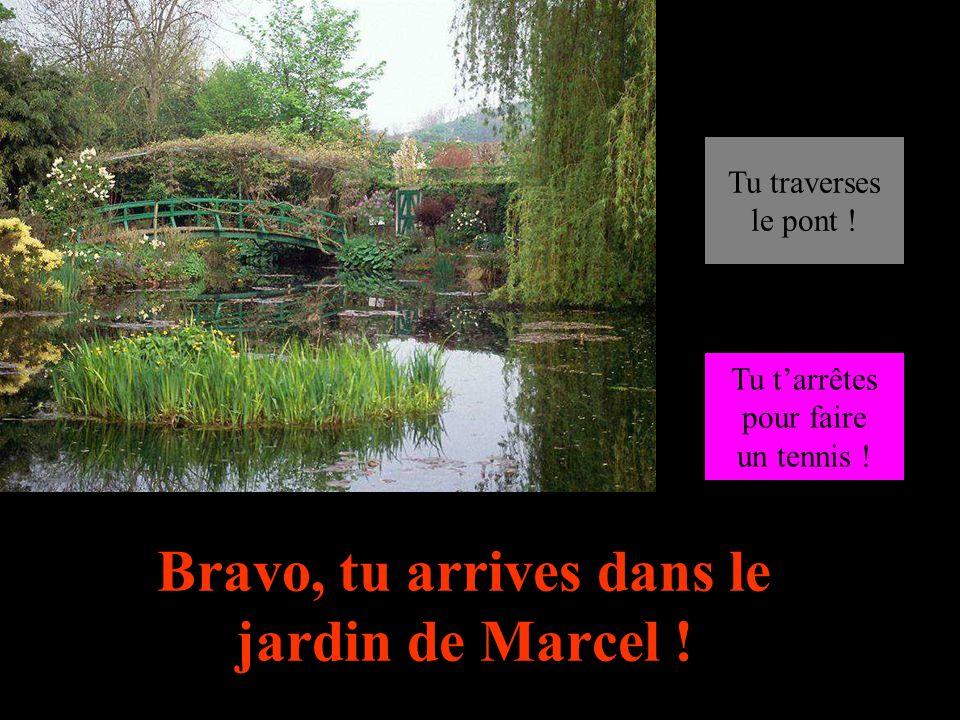 Bravo, tu arrives dans le jardin de Marcel !