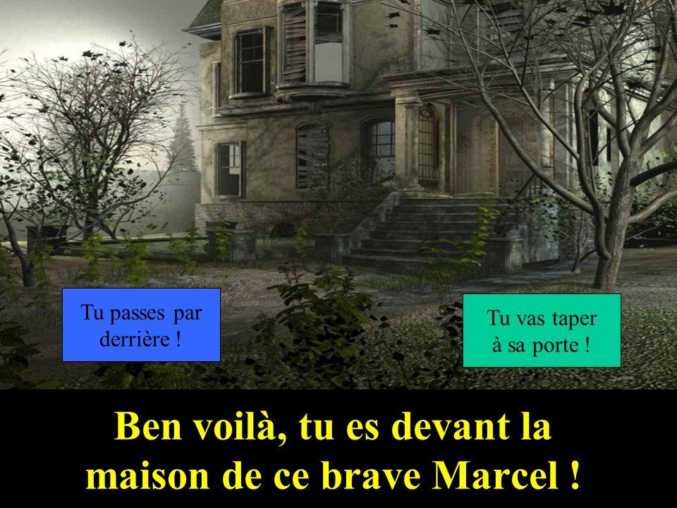 Ben voilà, tu es devant la maison de ce brave Marcel !