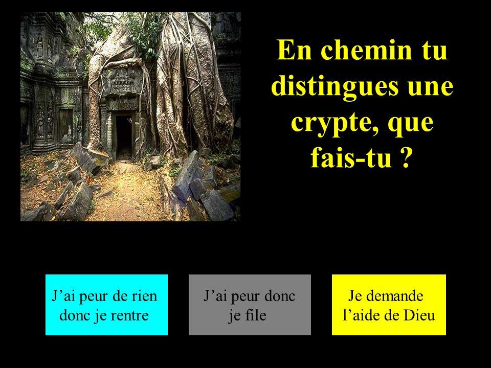 En chemin tu distingues une crypte, que fais-tu