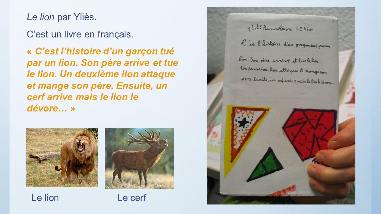 Le lion par Yliès.C'est un livre en français.