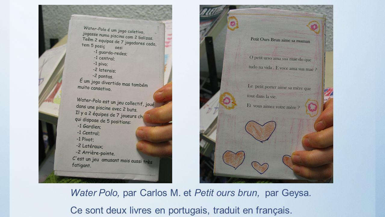 Water Polo, par Carlos M. et Petit ours brun, par Geysa.