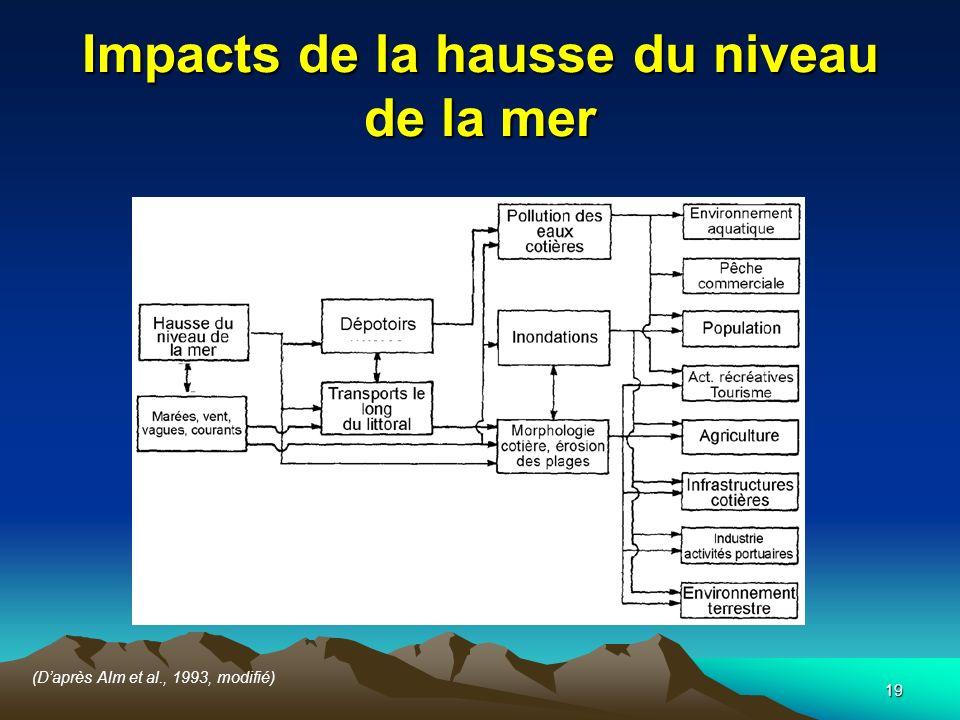 Impacts de la hausse du niveau de la mer