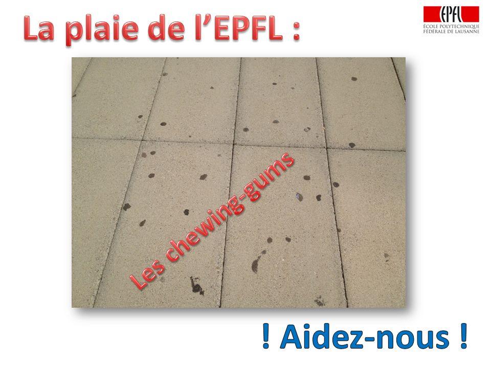 La plaie de l'EPFL : ! Aidez-nous !