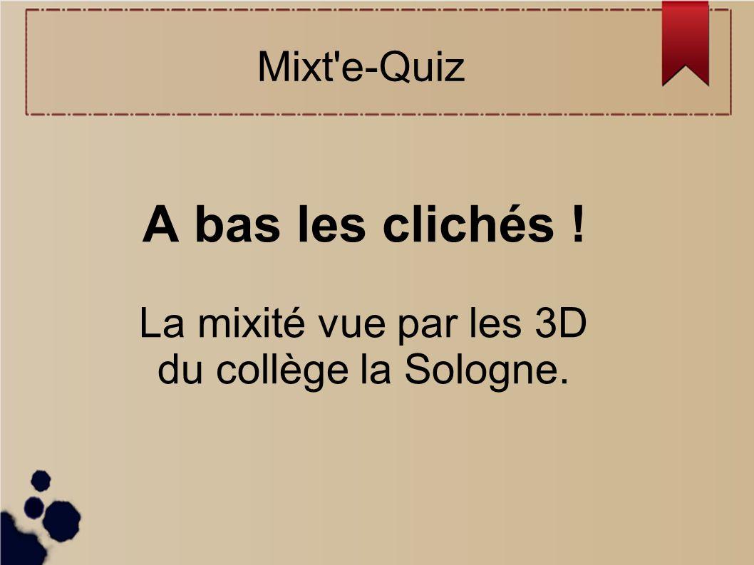 A bas les clichés ! La mixité vue par les 3D du collège la Sologne.
