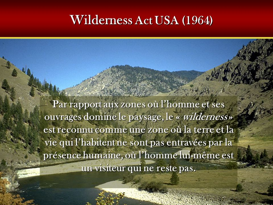 Wilderness Act USA (1964)