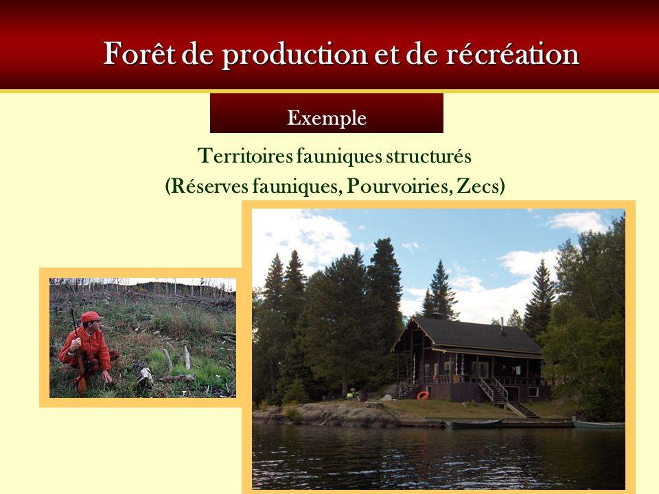 Forêt de production et de récréation