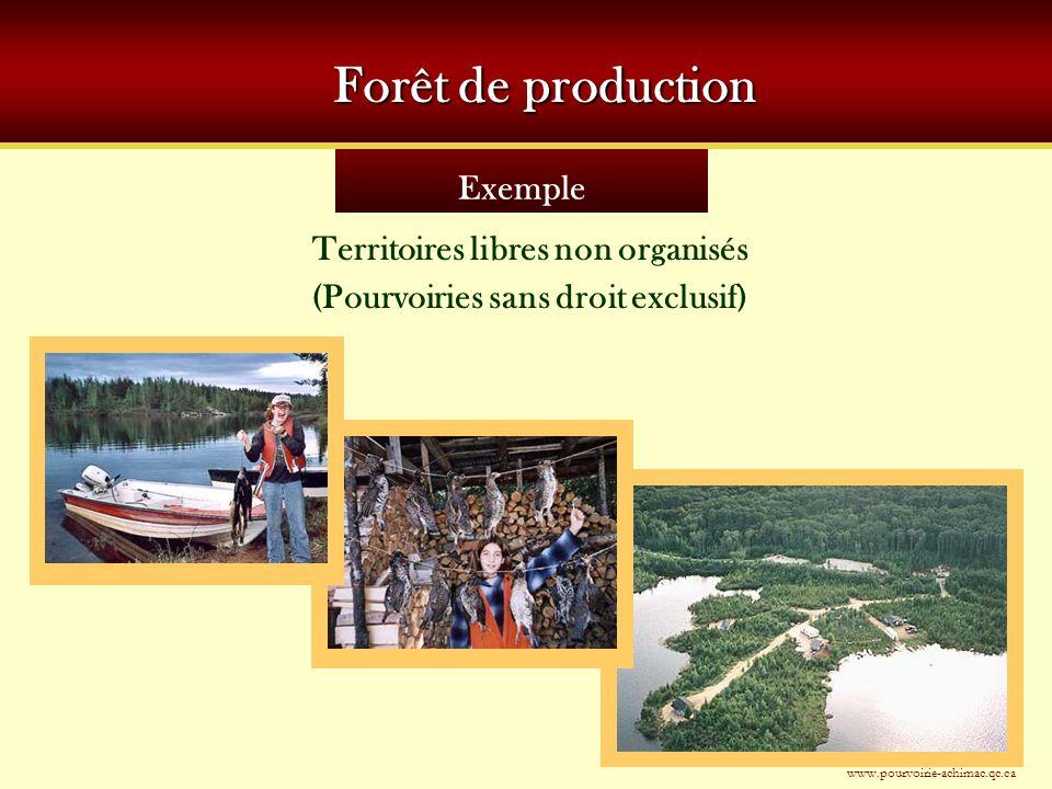 Territoires libres non organisés (Pourvoiries sans droit exclusif)