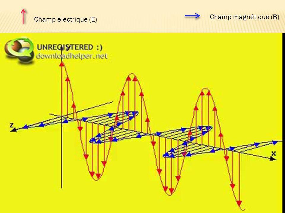 Champ magnétique (B) Champ électrique (E)