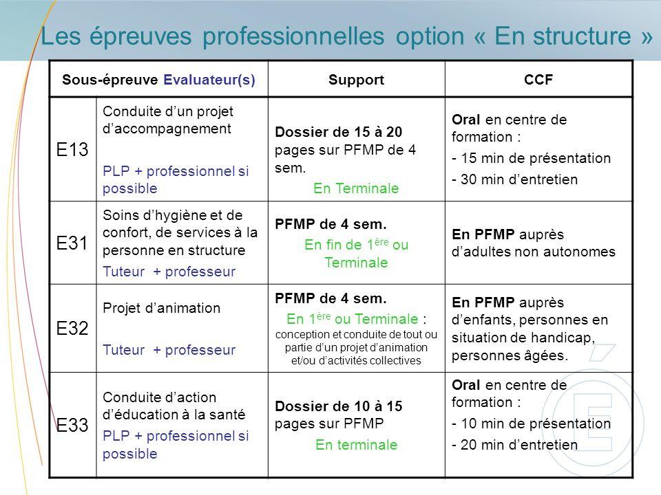 Les épreuves professionnelles option « En structure »