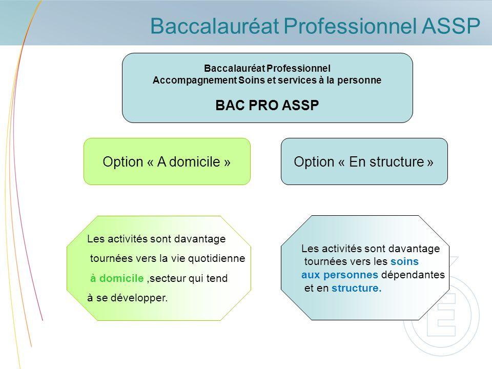 Baccalauréat Professionnel ASSP
