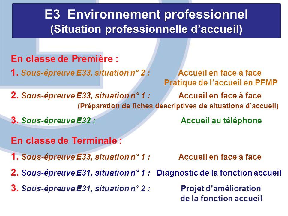 E3 Environnement professionnel