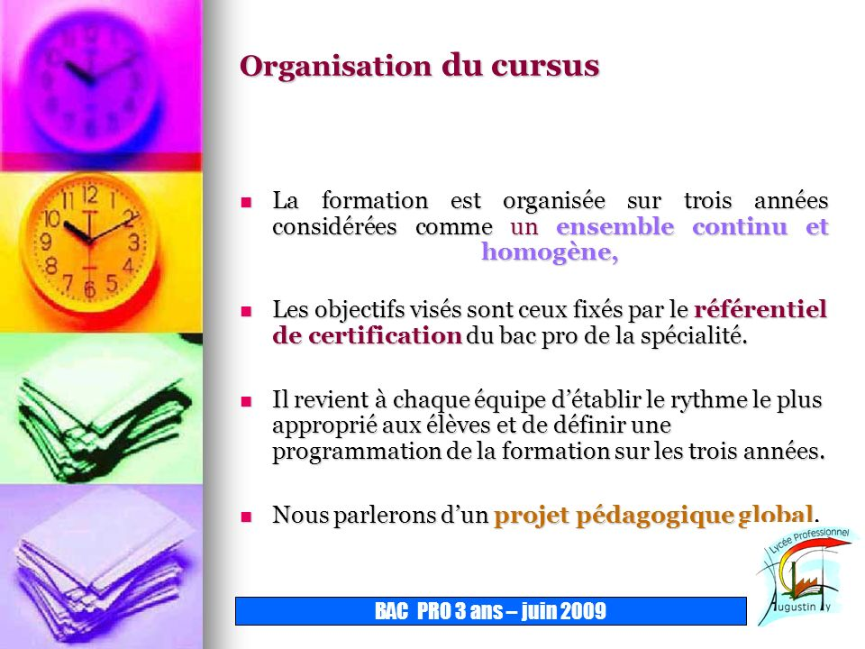 Organisation du cursus