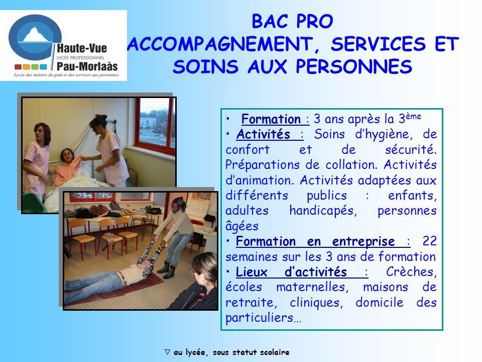 BAC PRO ACCOMPAGNEMENT, SERVICES ET SOINS AUX PERSONNES