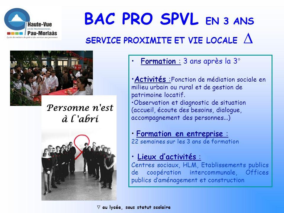 BAC PRO SPVL EN 3 ANS SERVICE PROXIMITE ET VIE LOCALE 
