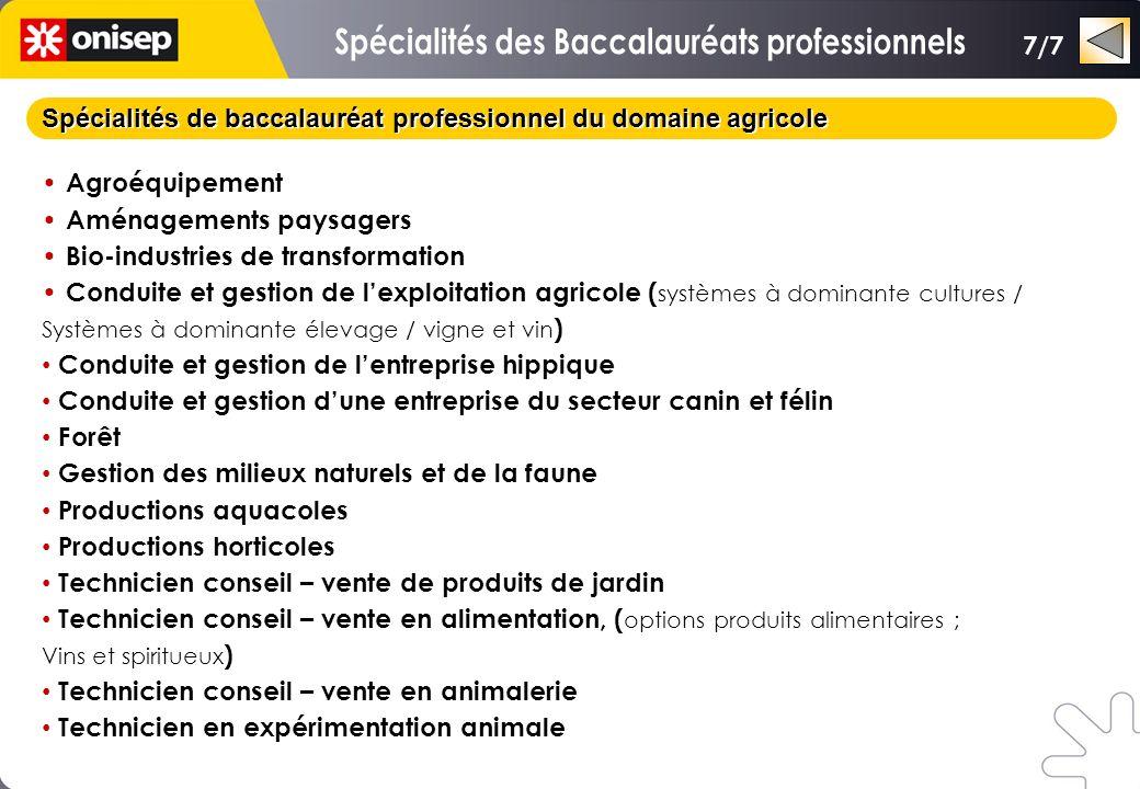 Spécialités des Baccalauréats professionnels