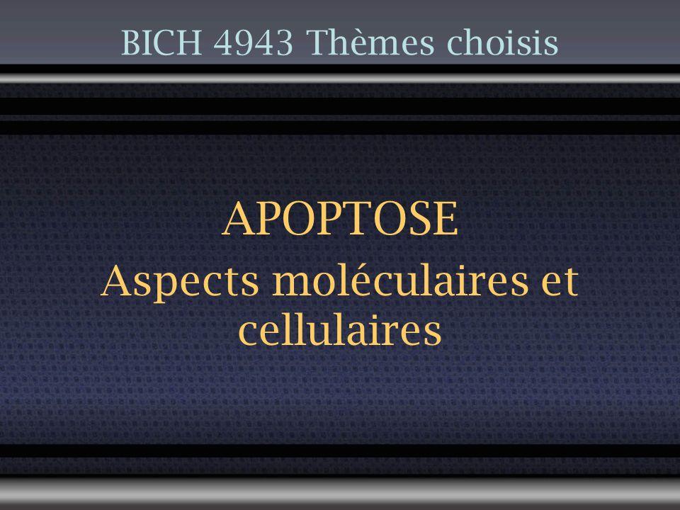 Généralités Apoptose 2008