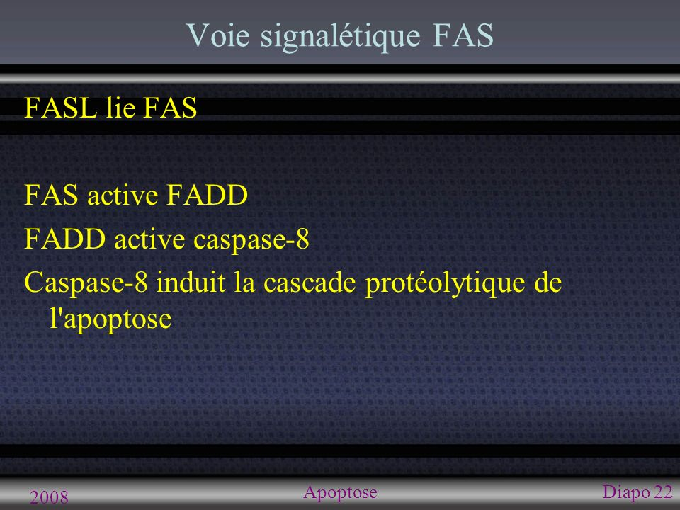 Voie sans caspase AIF ( Apoptosis incuding factor )