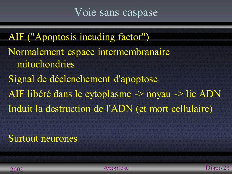 Pathologie et dérèglements physiologiques