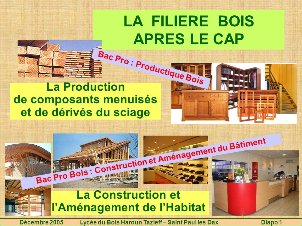 Licence Pro Construction Bois - LA FILIERE BOIS APRES LE CAP ppt video online télécharger