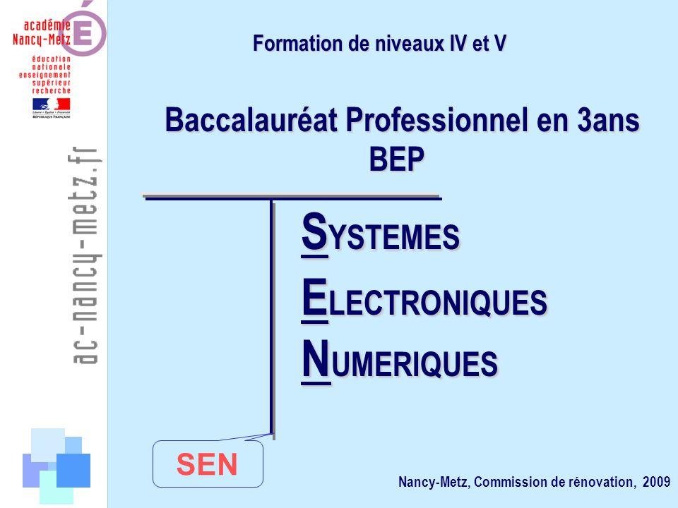 Formation de niveaux IV et V Baccalauréat Professionnel en 3ans