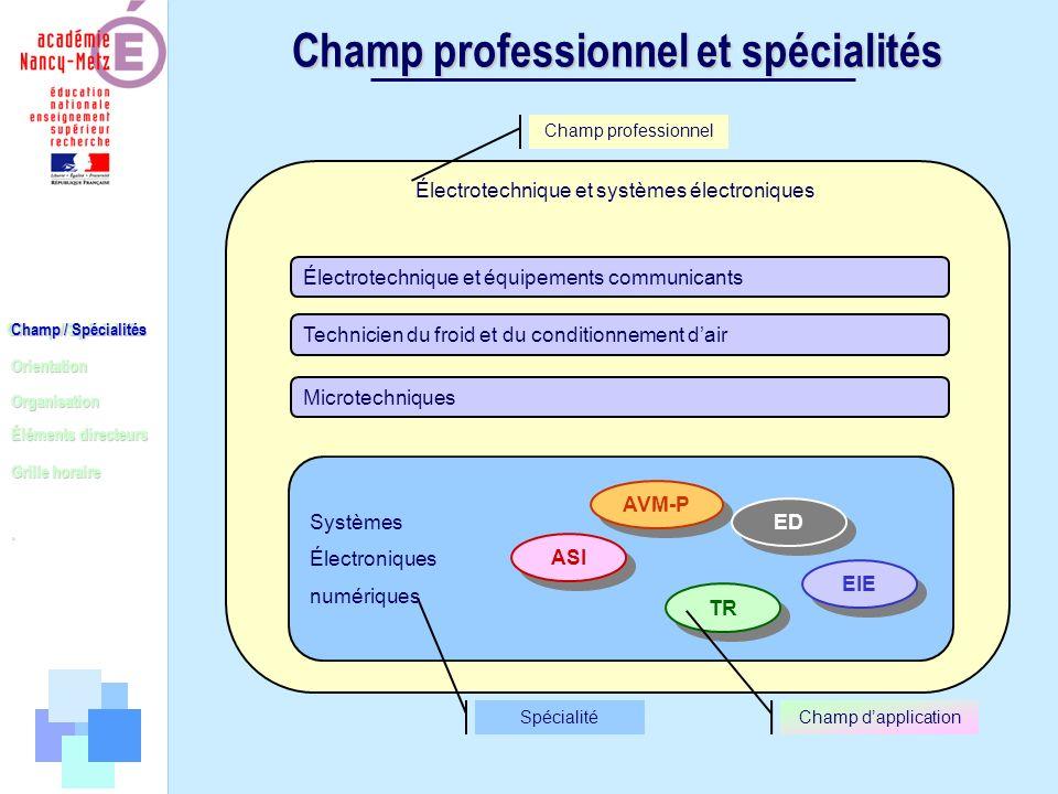 Champ professionnel et spécialités