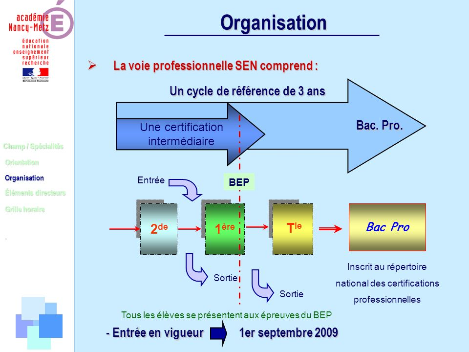 Organisation La voie professionnelle SEN comprend :