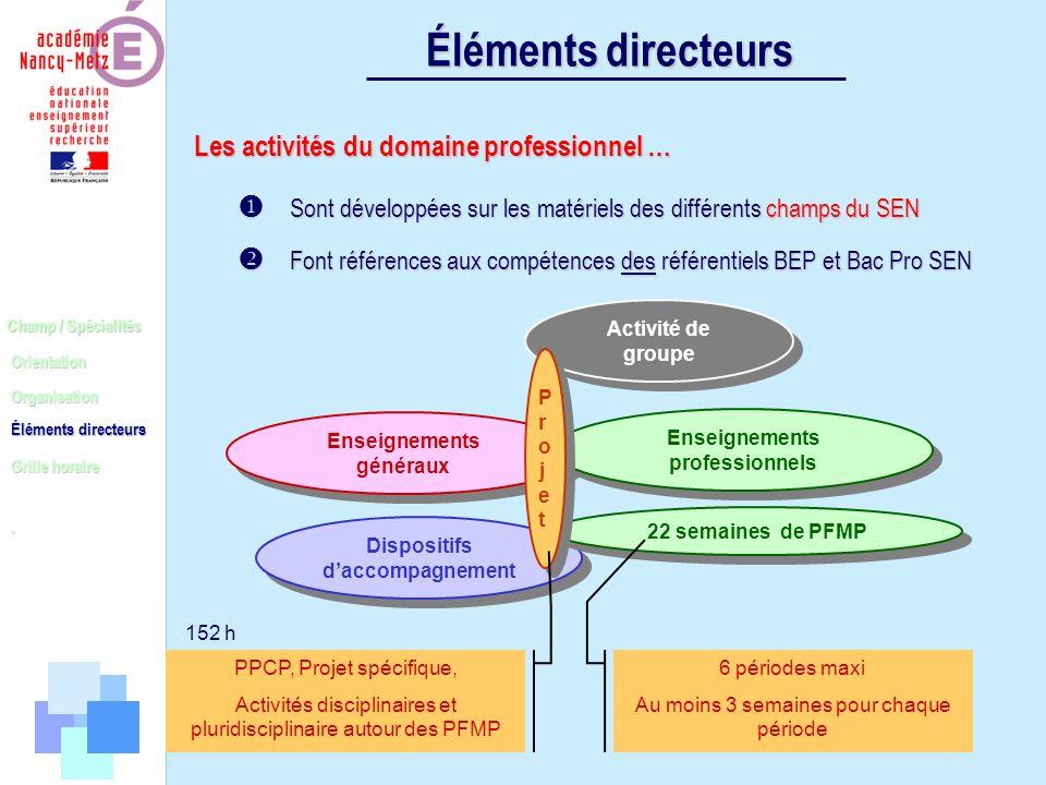 Éléments directeurs Les activités du domaine professionnel …