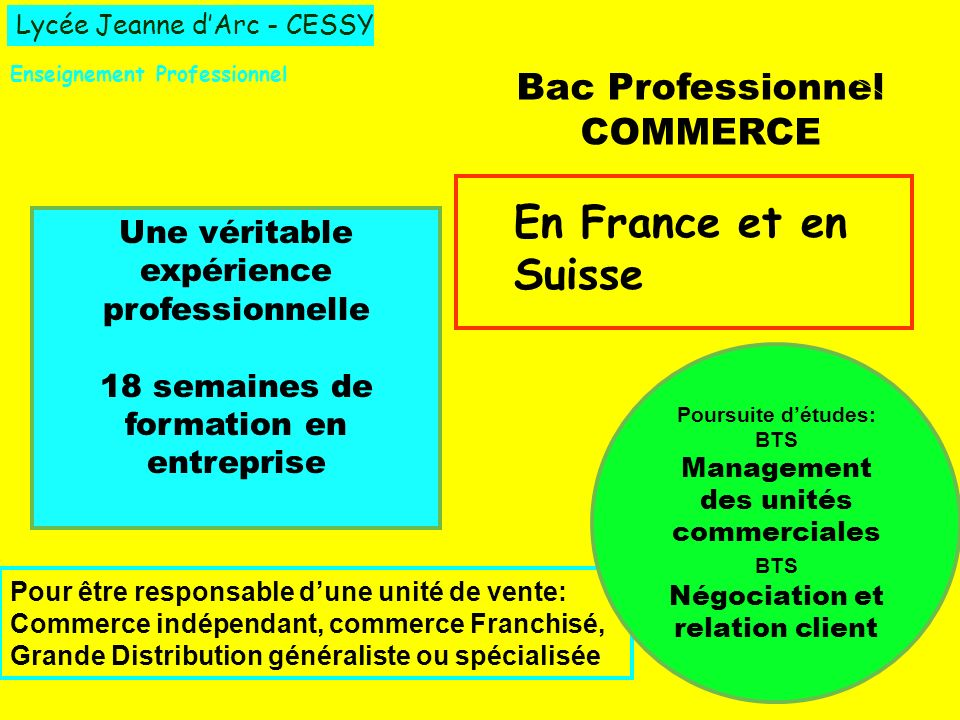 En France et en Suisse Bac Professionnel COMMERCE