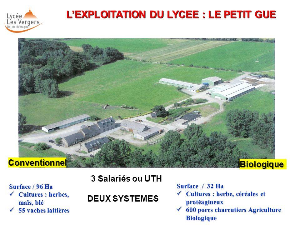 L'EXPLOITATION DU LYCEE : LE PETIT GUE