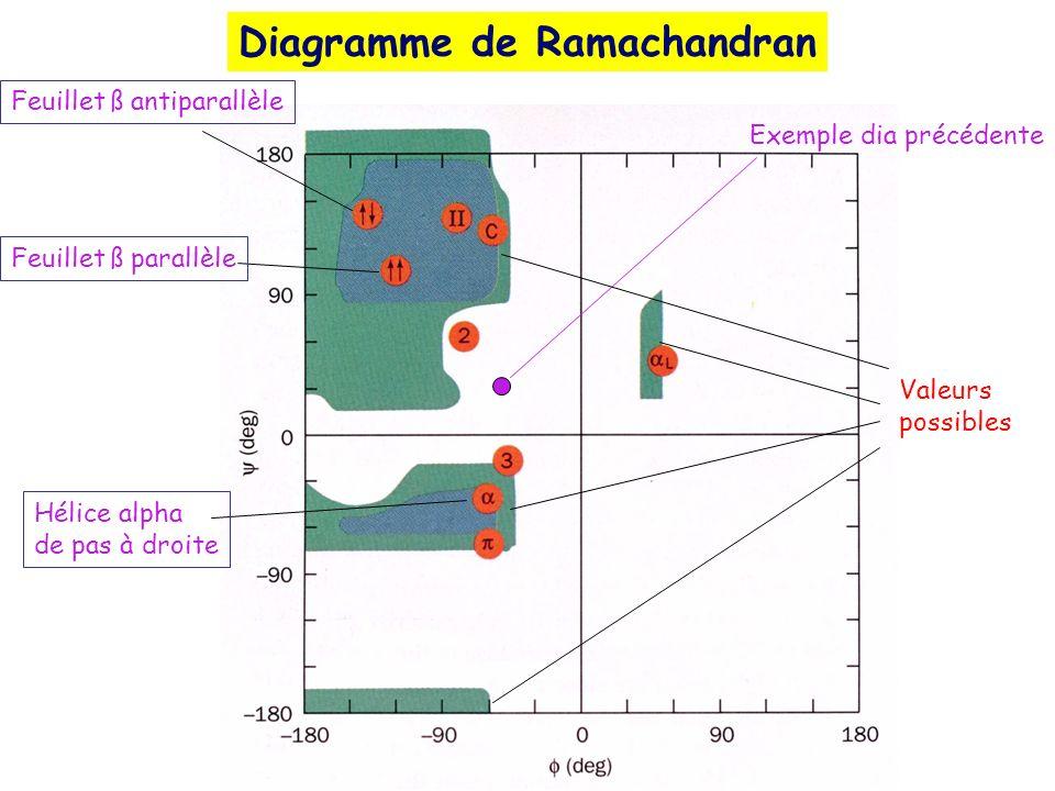Diagramme de Ramachandran