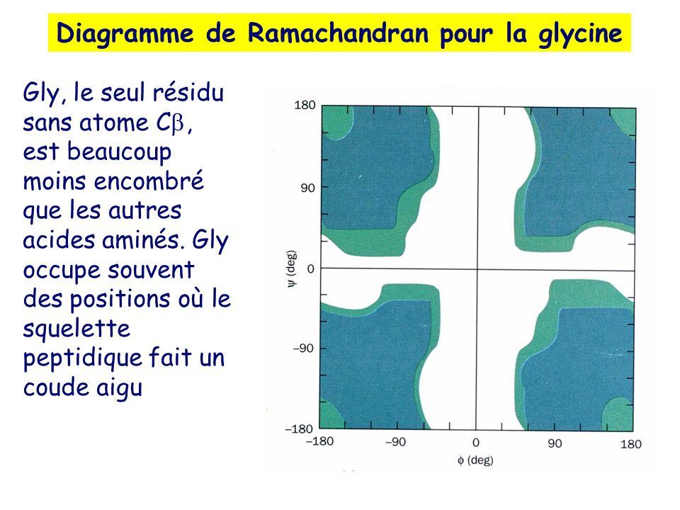 Diagramme de Ramachandran pour la glycine