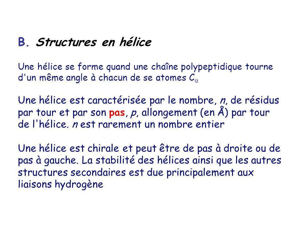 B. Structures en hélice Une hélice se forme quand une chaîne polypeptidique tourne d un même angle à chacun de se atomes C