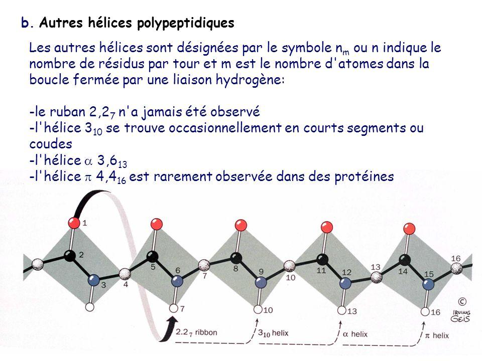 b. Autres hélices polypeptidiques