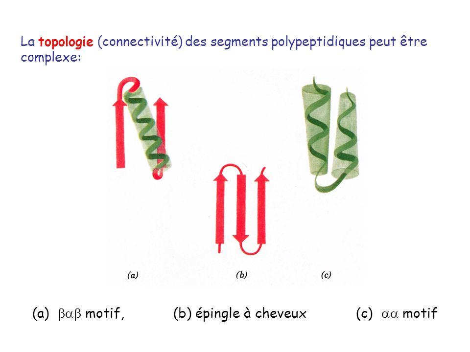 (a)  motif, (b) épingle à cheveux (c)  motif