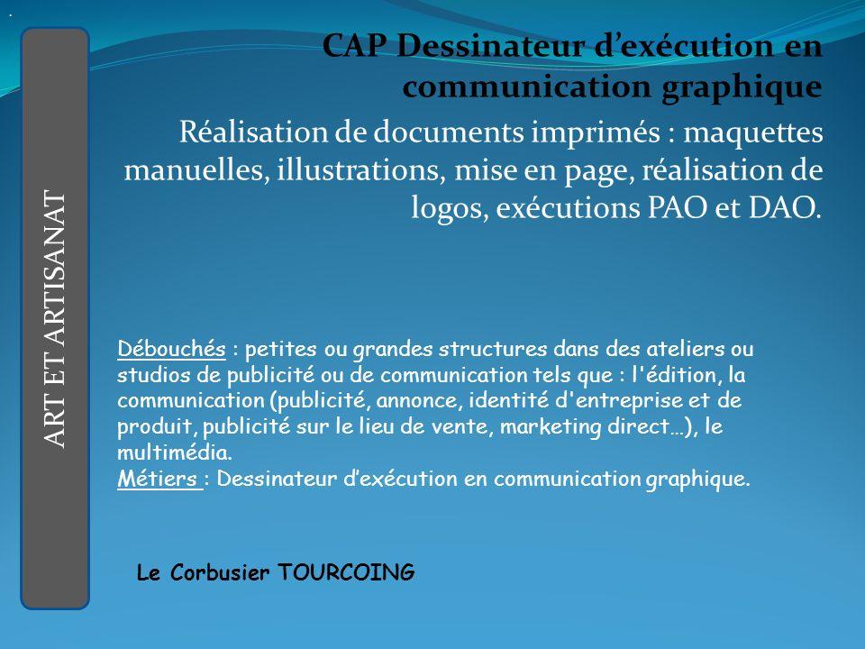 . CAP Dessinateur d'exécution en communication graphique.
