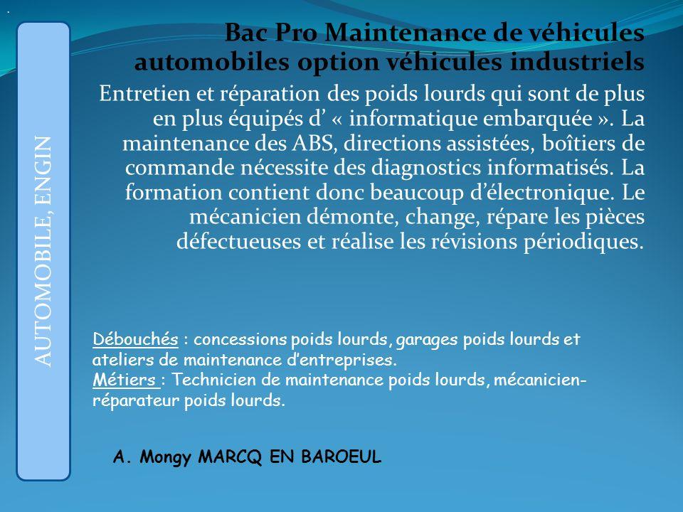 . Bac Pro Maintenance de véhicules automobiles option véhicules industriels.