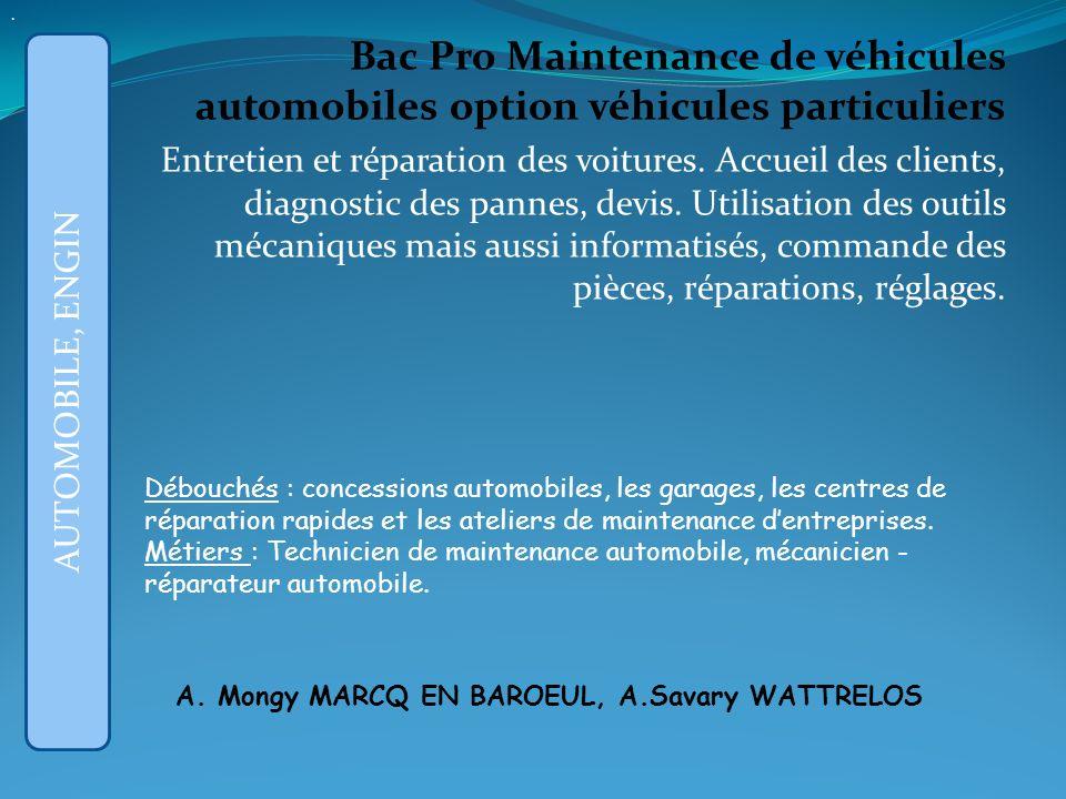 . Bac Pro Maintenance de véhicules automobiles option véhicules particuliers.