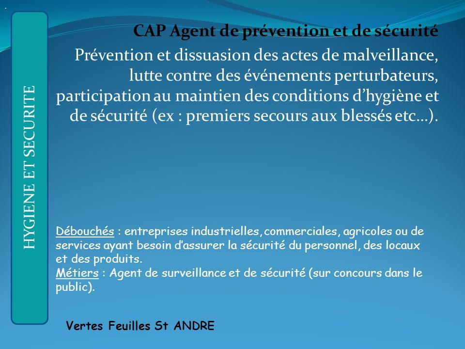 APRES LA 3ème GENERALE : CAP Agent de prévention et de sécurité