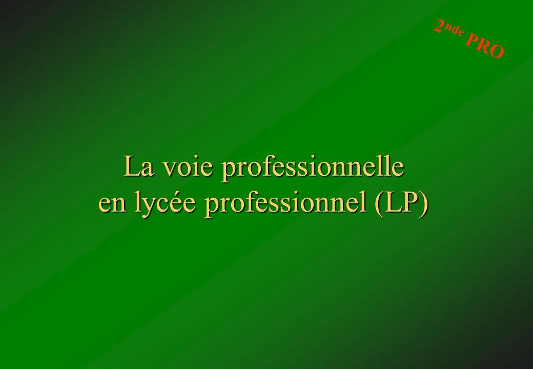 La voie professionnelle en lycée professionnel (LP)