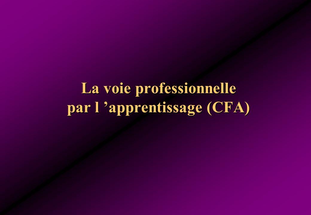 La voie professionnelle par l 'apprentissage (CFA)