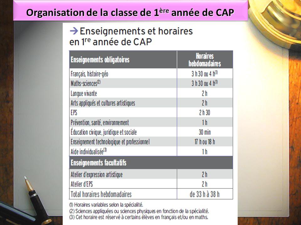 Organisation de la classe de 1ère année de CAP