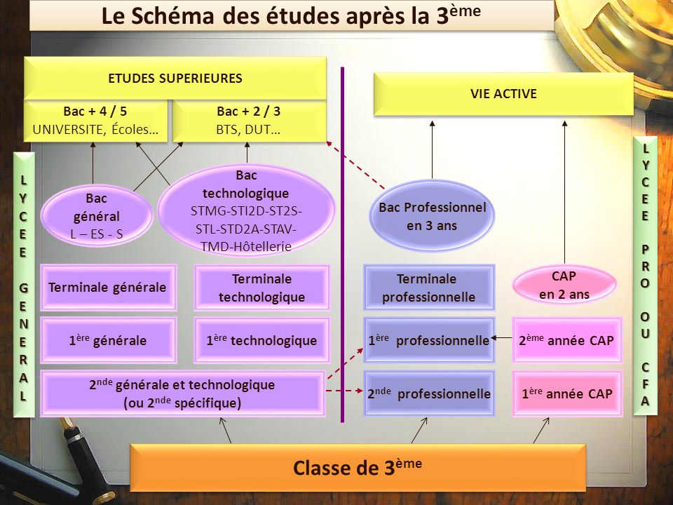 Orientation apres la 3eme ppt video online t l charger for Etude de cuisine apres le bac