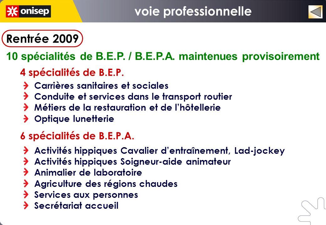 voie professionnelle Rentrée 2009