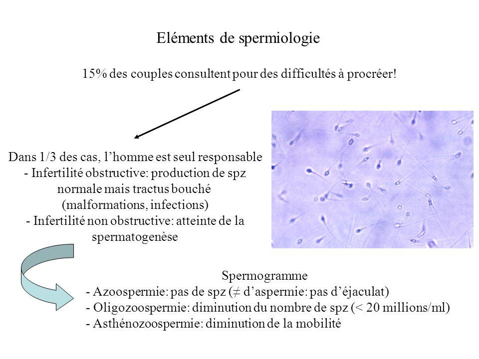 Eléments de spermiologie