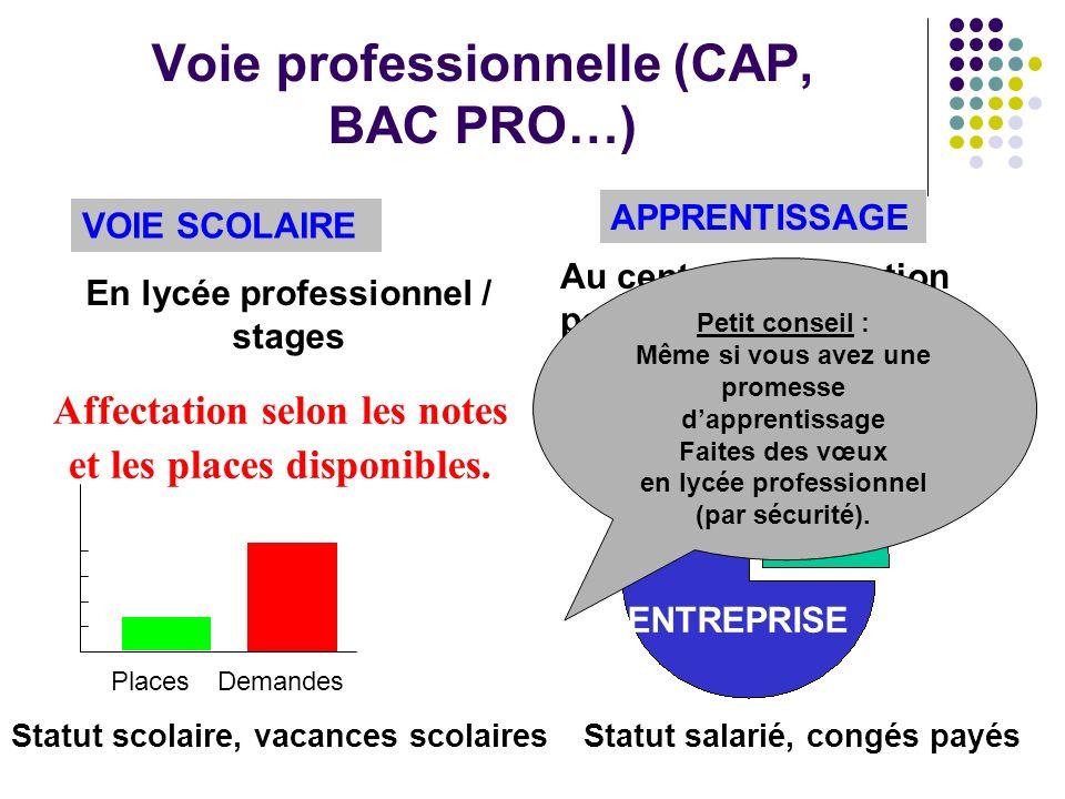 Voie professionnelle (CAP, BAC PRO…)