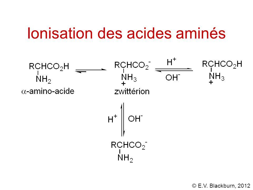 Ionisation des acides aminés