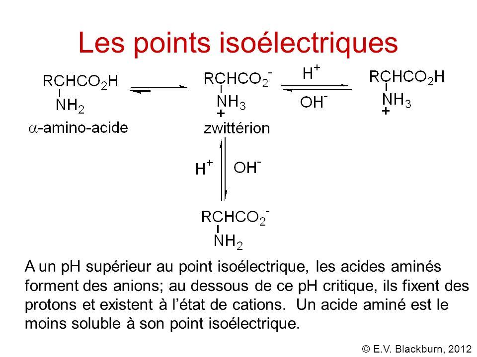 Les points isoélectriques